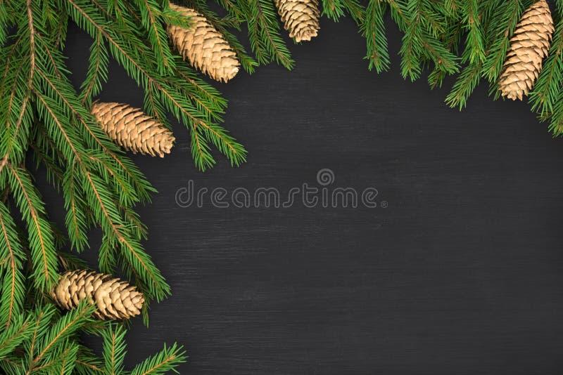 Marco de la ronda de la Navidad de las ramas de árbol del invierno con los conos en fondo negro Fondo festivo del invierno imagen de archivo libre de regalías