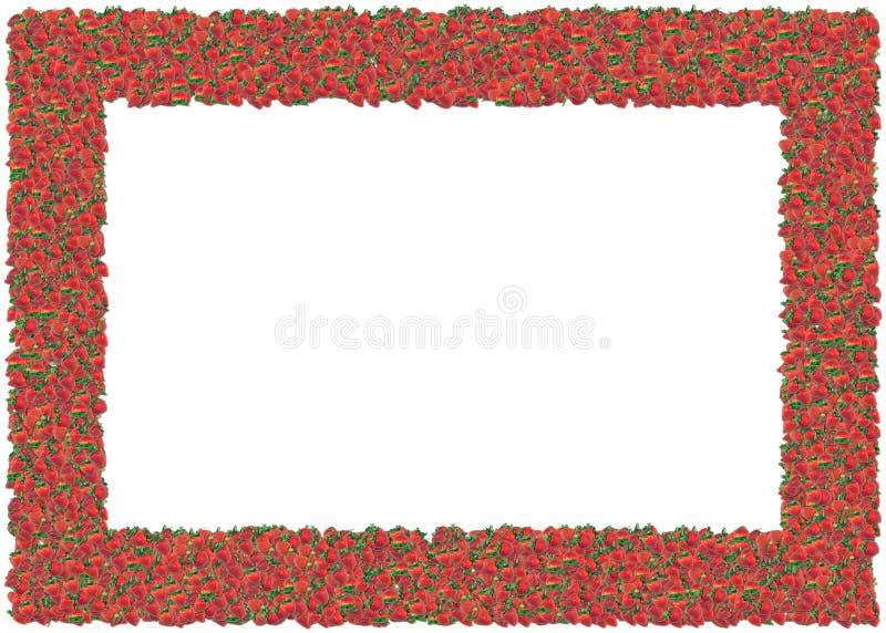 Marco de las fresas ilustración del vector