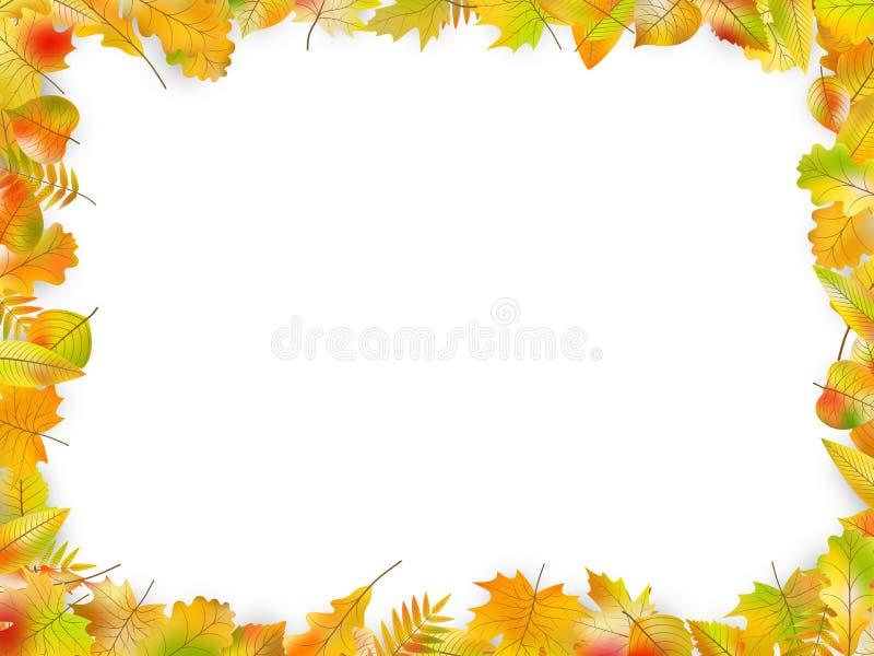 Marco de las hojas de otoño aislado en blanco Vector del EPS 10 stock de ilustración