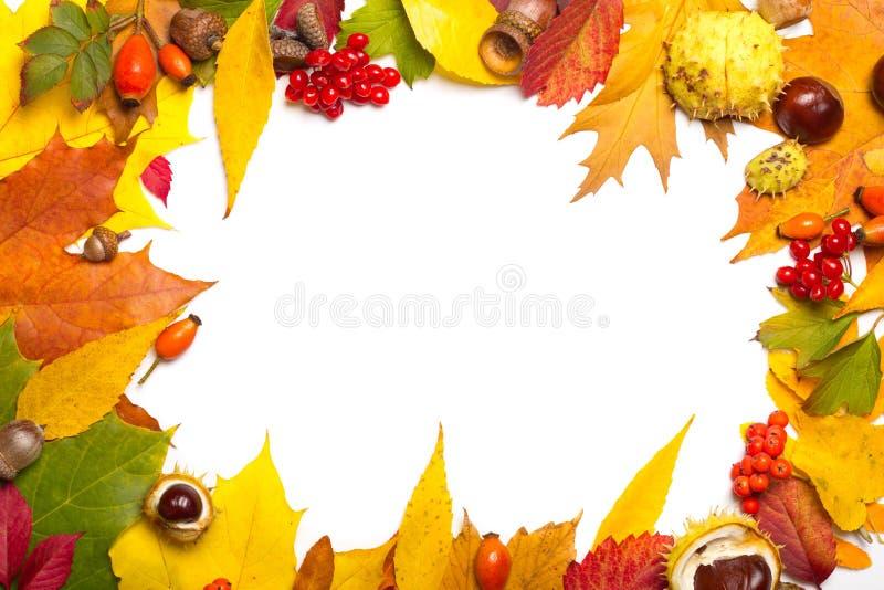 Marco de los elementos del otoño imagen de archivo libre de regalías