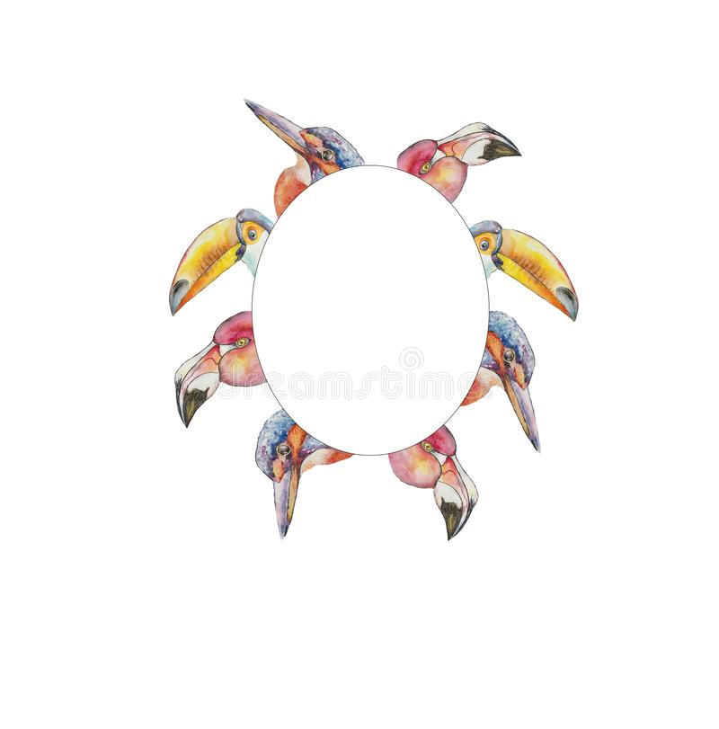 marco de los flamencos y del martín pescador exóticos del tucán de los pájaros ilustración del vector