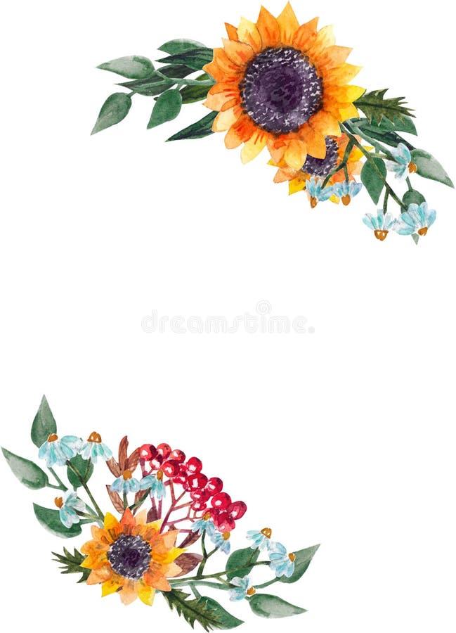 Marco de los girasoles de la acuarela stock de ilustración
