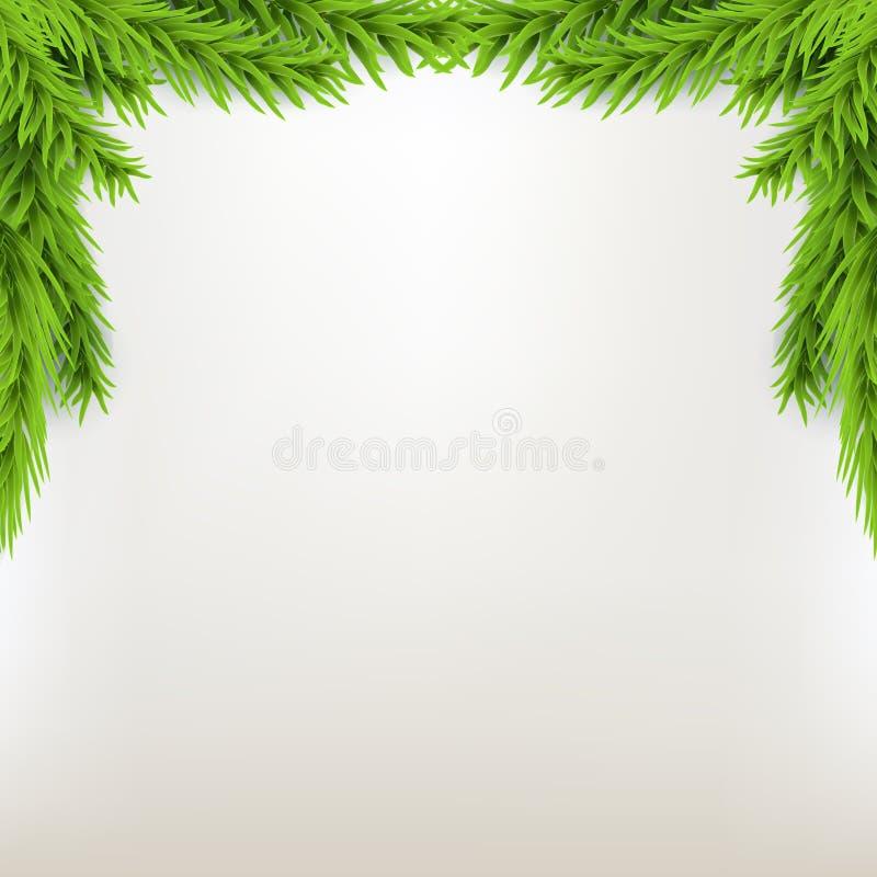 Marco de Navidad de la frontera con el abeto Fondo verde del invierno de la Navidad Árbol de Navidad del ejemplo del vector ilustración del vector