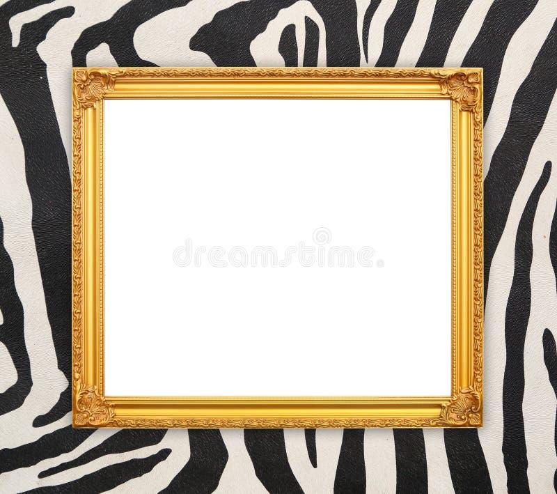 Marco de oro en blanco con textura de la cebra foto de archivo libre de regalías