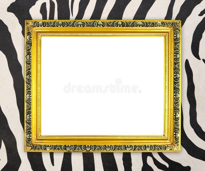 Marco de oro en blanco con textura de la cebra imagen de archivo libre de regalías