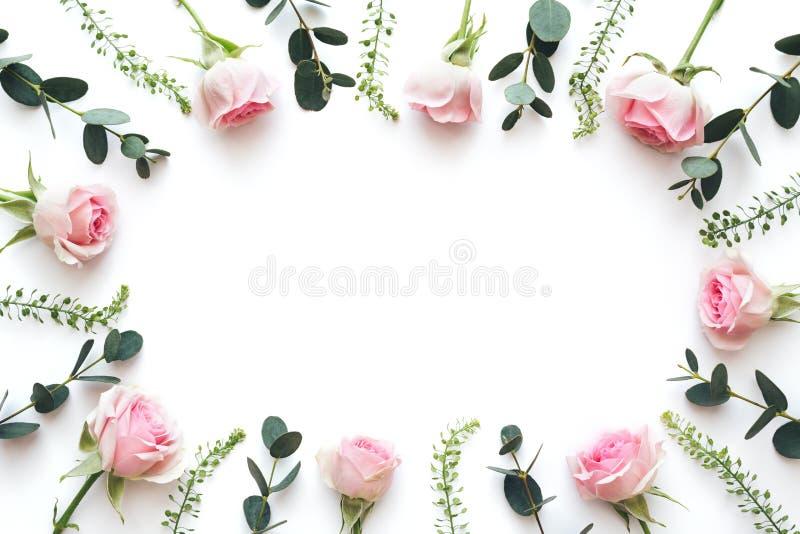 Marco De Roses Rosa Y Hojas Verdes En Fondo Blanco imagen de archivo libre de regalías