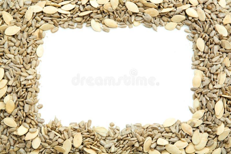 Marco de semillas imagen de archivo libre de regalías