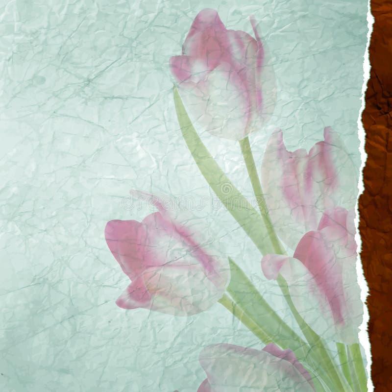 Marco de texto del vintage con los tulipanes, papel viejo. EPS 10 ilustración del vector