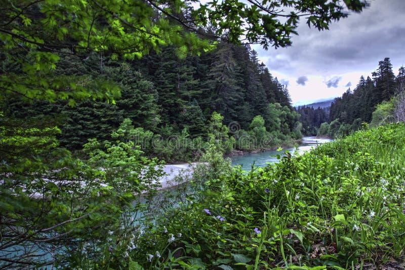 Marco decisivo do rio da enguia foto de stock royalty free