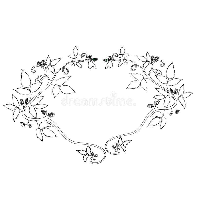 Marco decorativo blanco y negro de la baya, aislado libre illustration