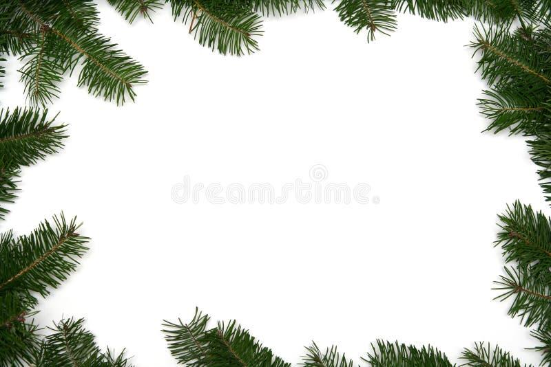 Marco del árbol de navidad fotos de archivo