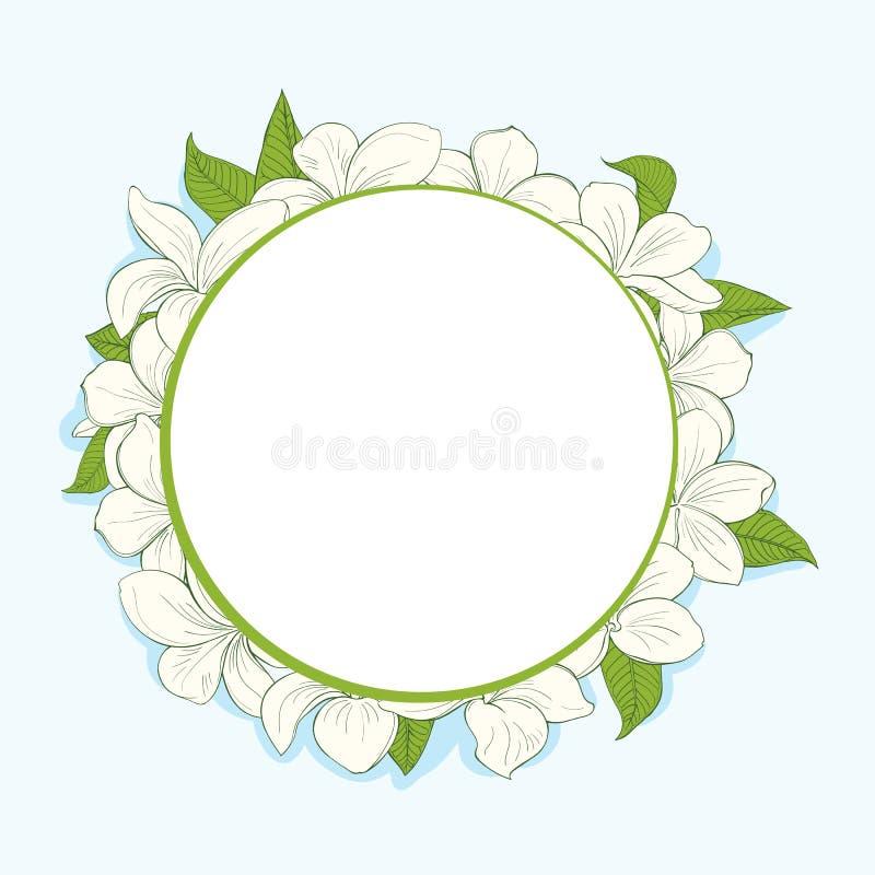 Marco del círculo con las flores del plumeria ilustración del vector