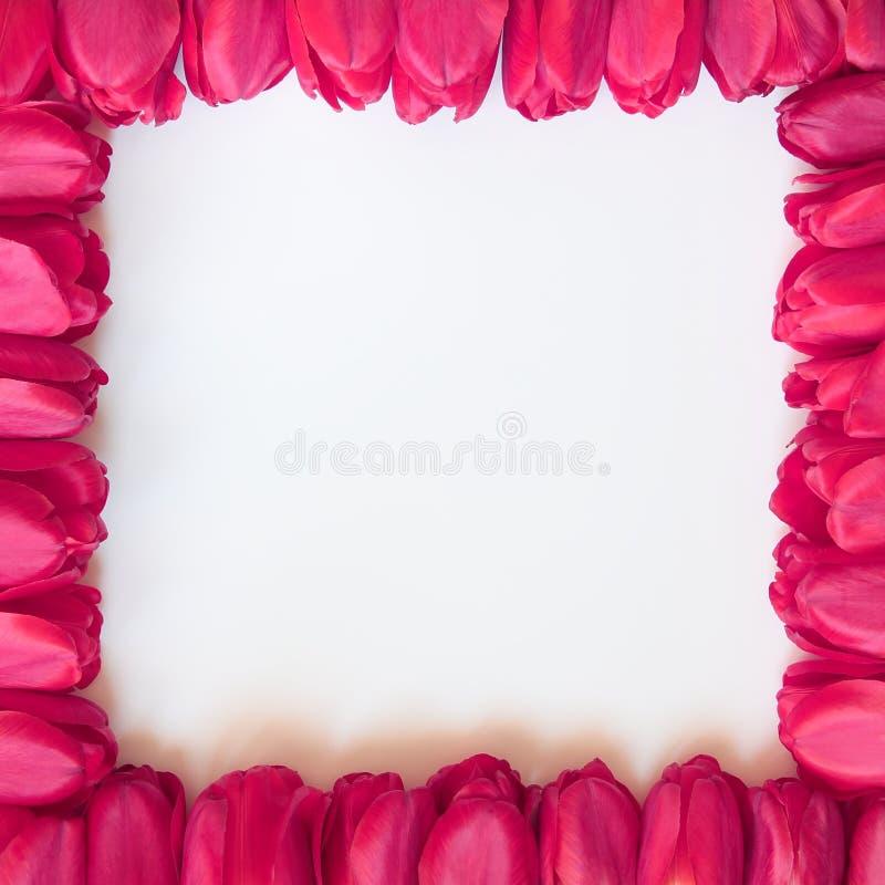 Marco del día de las tarjetas del día de San Valentín o de madres - fotos comunes imagen de archivo libre de regalías