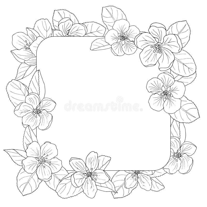 Marco del flor de Apple, página que colorea stock de ilustración