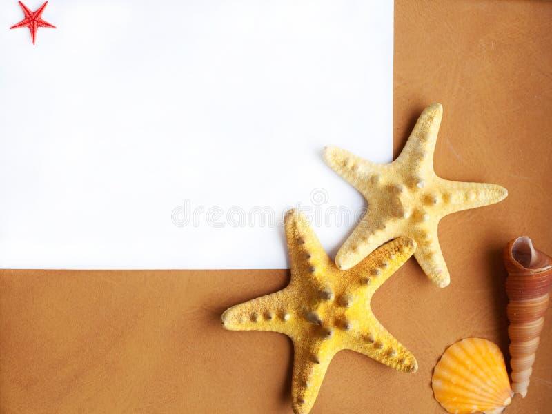 Marco del océano foto de archivo libre de regalías