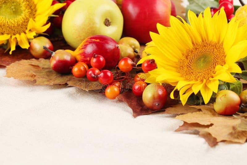 Marco del otoño con las frutas y los girasoles fotos de archivo libres de regalías