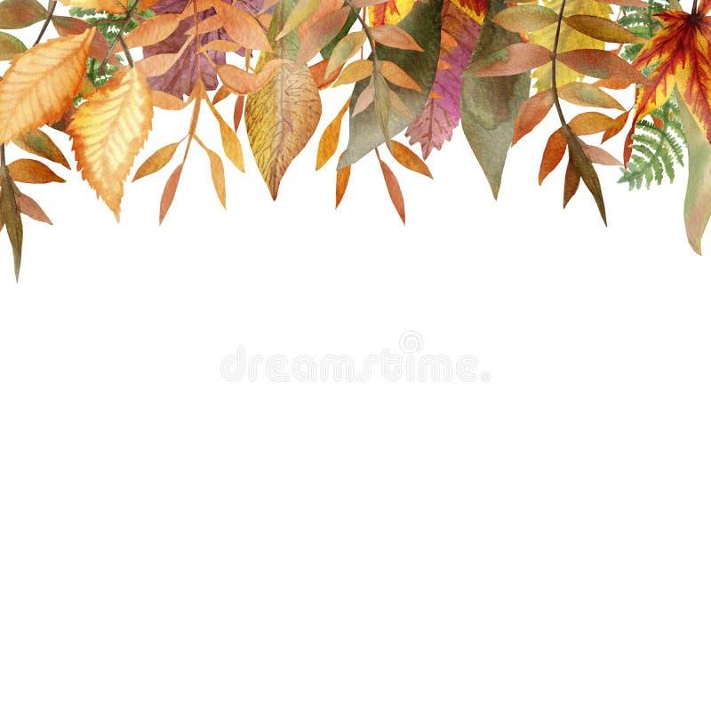 Marco del otoño de la acuarela de las ramas de árbol con las hojas coloridas ilustración del vector