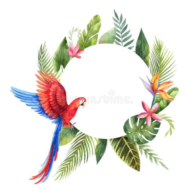 Marco del vector de la acuarela con el loro rojo, las hojas tropicales y las flores aislados en el fondo blanco libre illustration