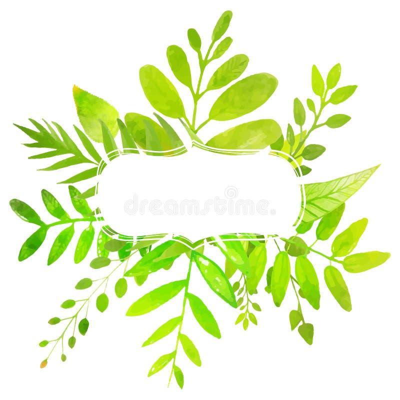 Marco del verano con las hojas verdes claras pintadas libre illustration
