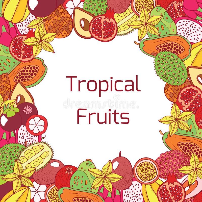 Marco dibujado mano colorida con las frutas exóticas tropicales Vector GR ilustración del vector