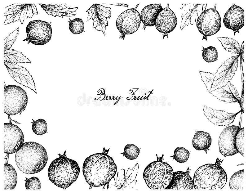Marco dibujado mano de la grosella espinosa y del arándano negros del terciopelo stock de ilustración