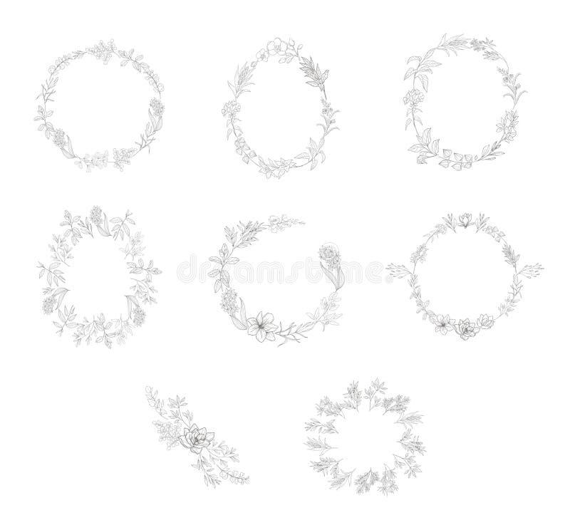 Marco floral con la planta Decoraci?n de la flor para la tarjeta de felicitaci?n y el monograma imágenes de archivo libres de regalías