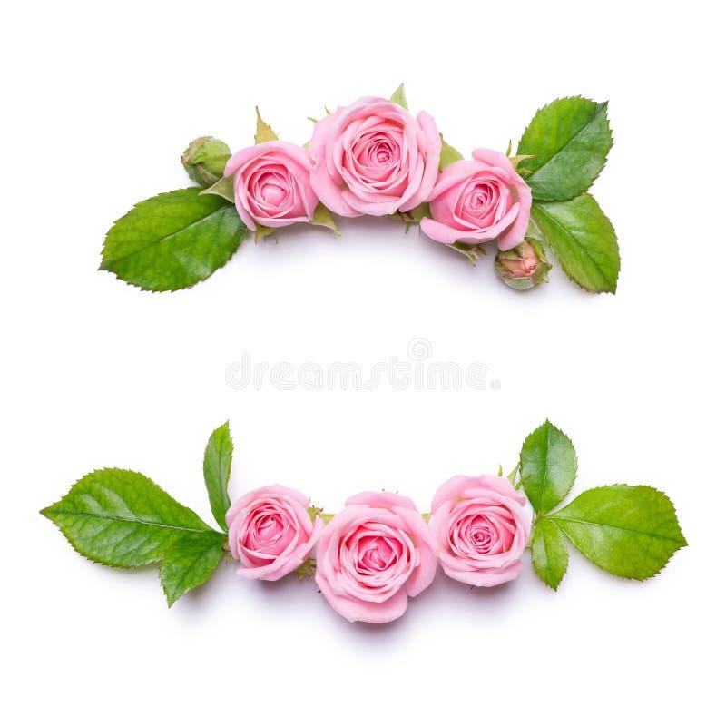 Marco floral con las rosas rosadas en un fondo blanco Frontera de flores imagenes de archivo