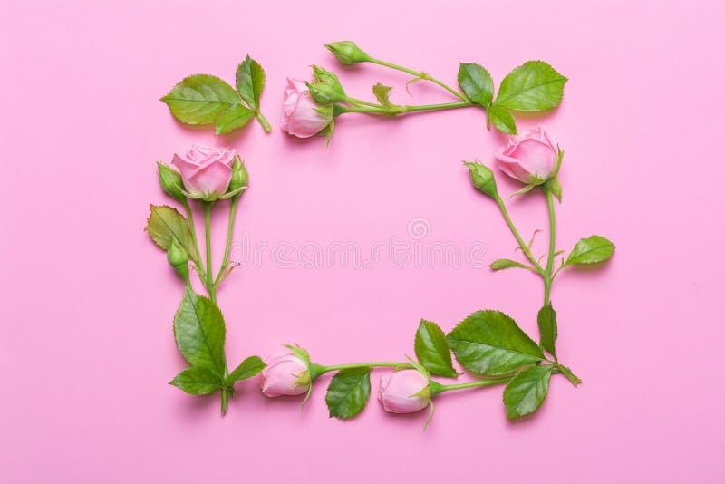 Marco floral con las rosas rosadas en un fondo rosado Arrincona las fronteras de flores foto de archivo