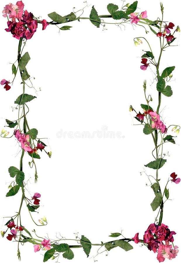 Marco floral de las rosas y de las hojas stock de ilustraci n ilustraci n de decoraci n - Decoracion de marcos de fotos ...