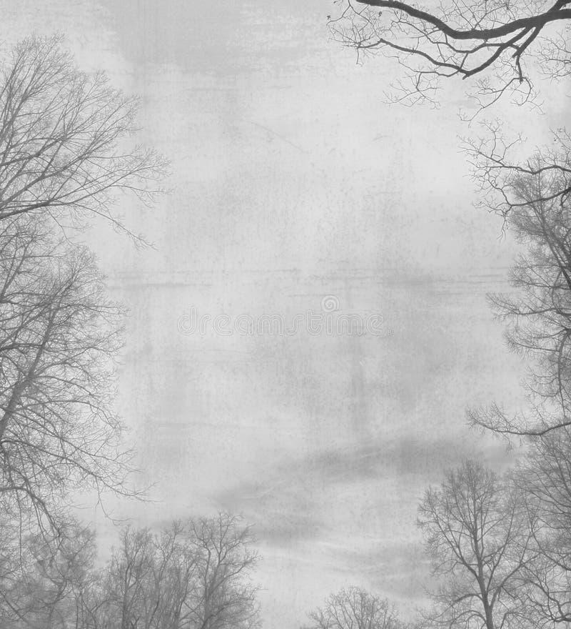 Marco floral del invierno imagen de archivo