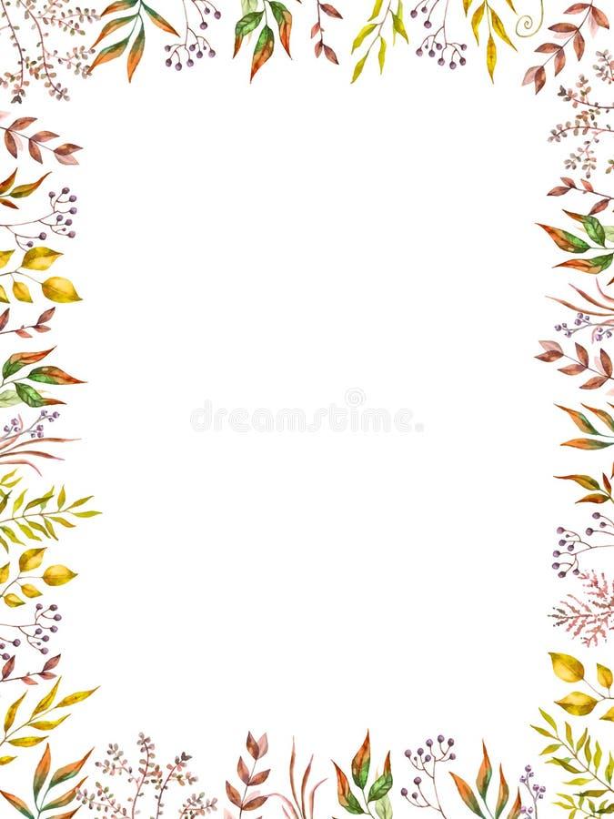 Marco herbario del vector de la mezcla Plantas, ramas y hojas pintadas a mano en el fondo blanco Diseño de tarjeta natural de la  libre illustration