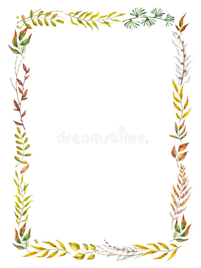 Marco herbario del vector de la mezcla Plantas, ramas y hojas pintadas a mano en el fondo blanco Diseño de tarjeta natural de la  stock de ilustración