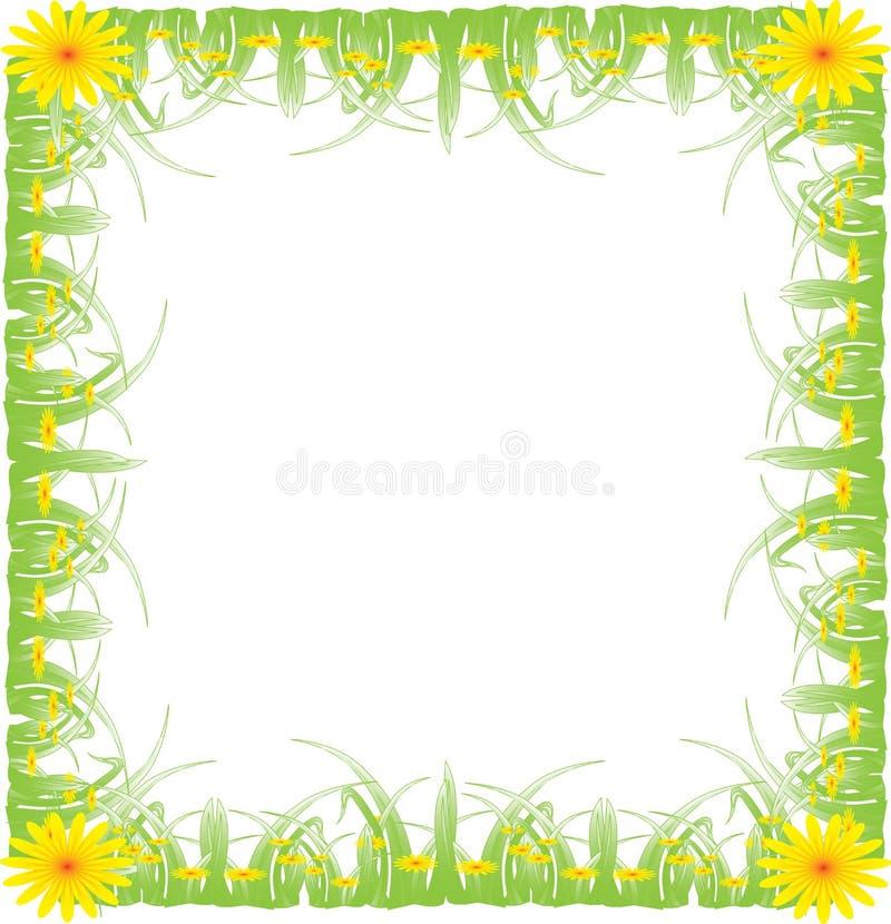 Marco, hierba verde ilustración del vector
