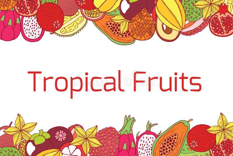 Marco horizontal dibujado mano colorida con las frutas exóticas tropicales ilustración del vector