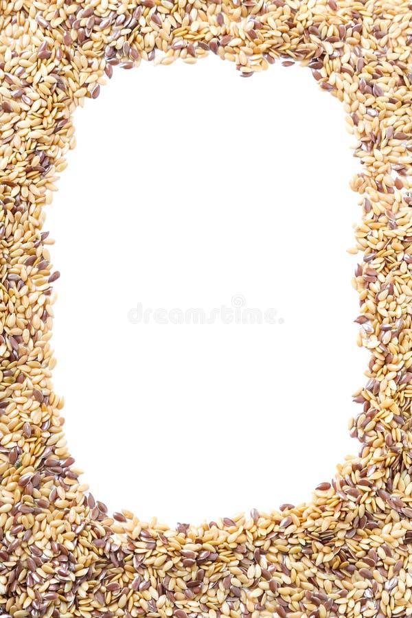 Marco mezclado de la linaza de las semillas fotografía de archivo