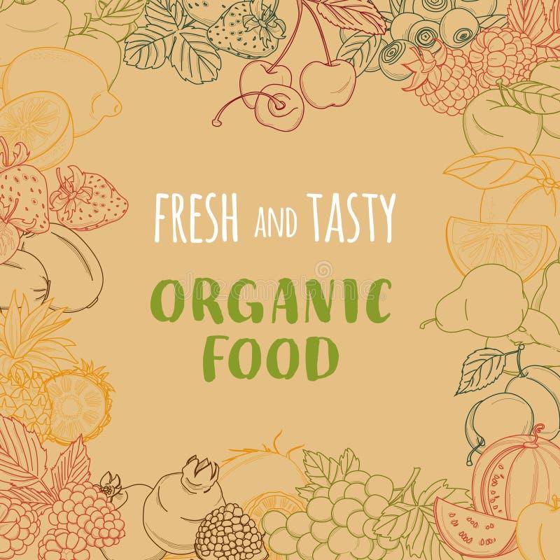 Marco orgánico fresco de las frutas y verduras del verano de la primavera contorno ilustración del vector