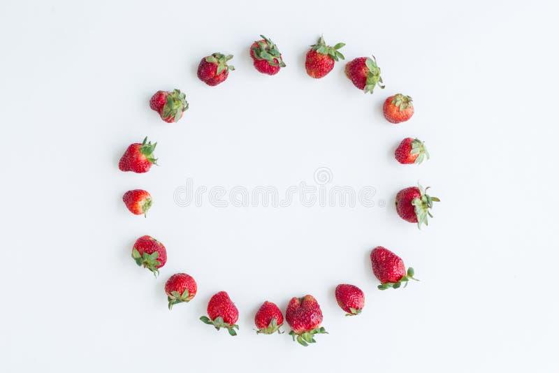 Marco oval de fresas en el fondo blanco Endecha plana, visi?n superior imagen de archivo libre de regalías