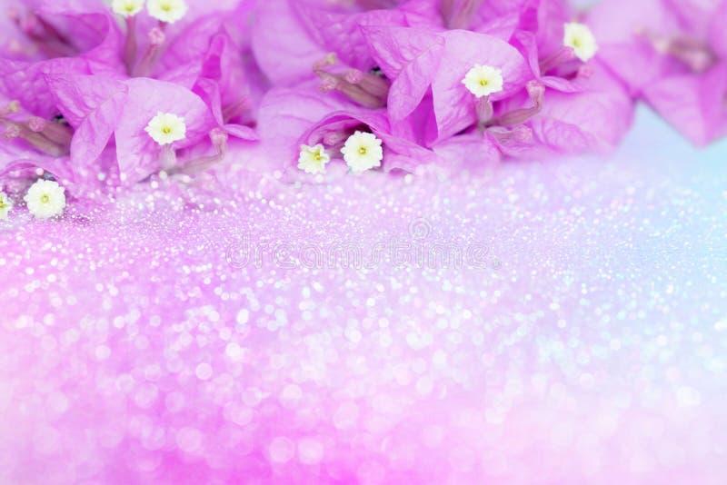 Marco púrpura de la buganvilla de la flor en fondo del brillo del bokeh con el espacio de la copia, idea para la tarjeta de la ta fotografía de archivo