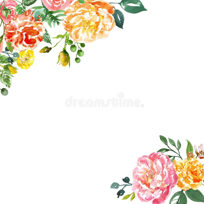 Marco pintado a mano de las flores del Watercolour en el fondo blanco Peonías rosadas del anfd amarillo con los brotes y el folla stock de ilustración
