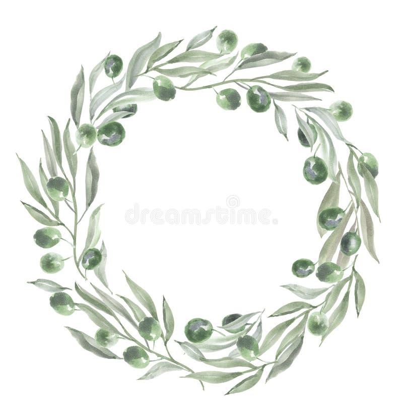 Marco redondo con las aceitunas y las hojas ilustración del vector