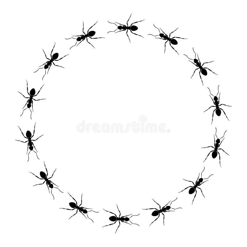Marco redondo de hormigas libre illustration