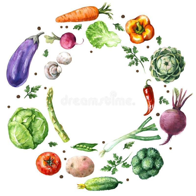 Marco redondo de las diversas verduras stock de ilustración