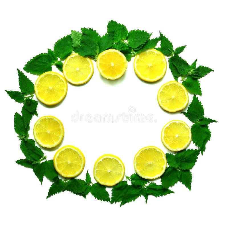 Marco redondo del limón, de la menta y de la fresa foto de archivo libre de regalías