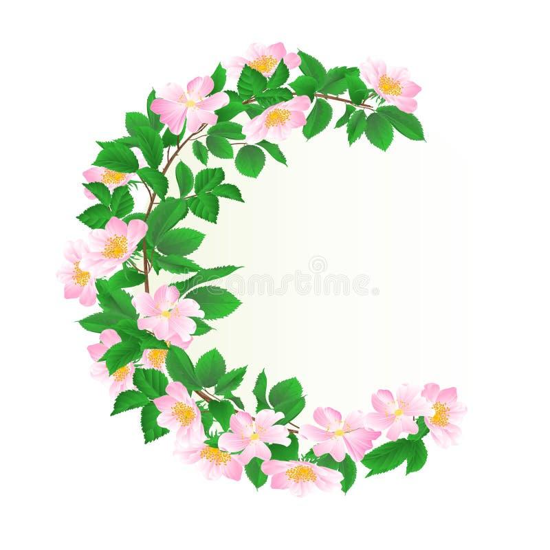 Marco redondo floral con el ejemplo festivo del vector del fondo del vintage salvaje de las rosas editable libre illustration