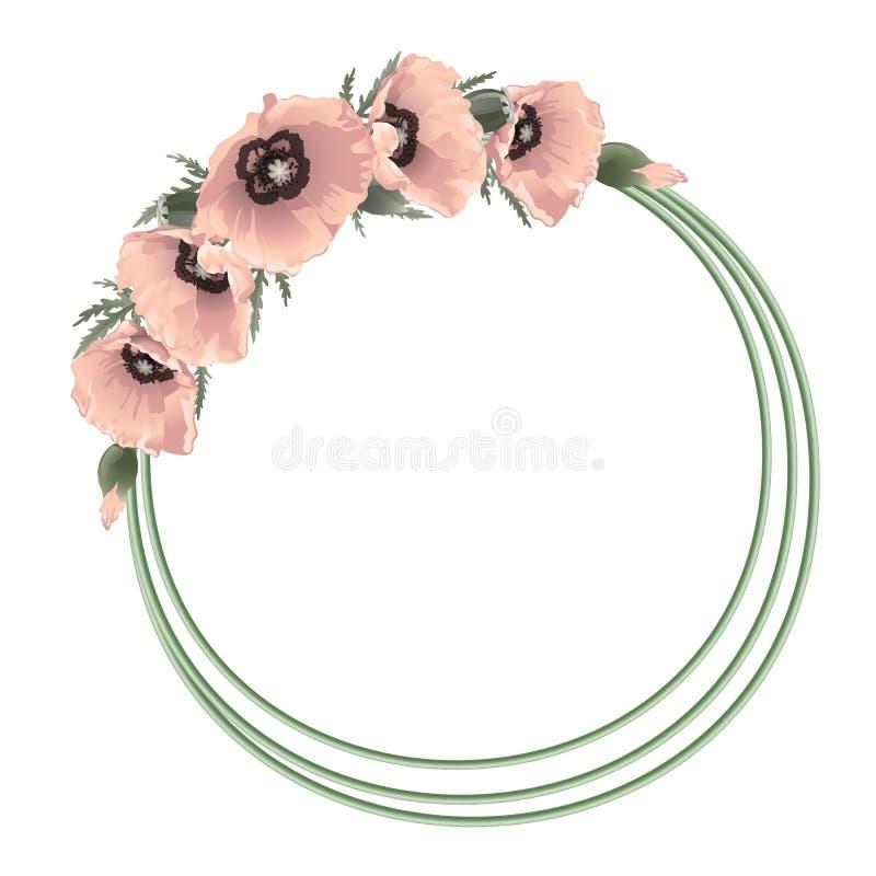 Marco redondo floral de las amapolas rosadas, vector stock de ilustración