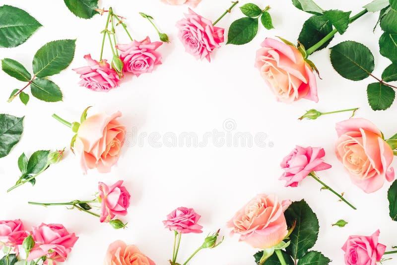 Marco redondo floral hecho de las flores en colores pastel de las rosas en blanco Endecha plana, visión superior imagen de archivo libre de regalías