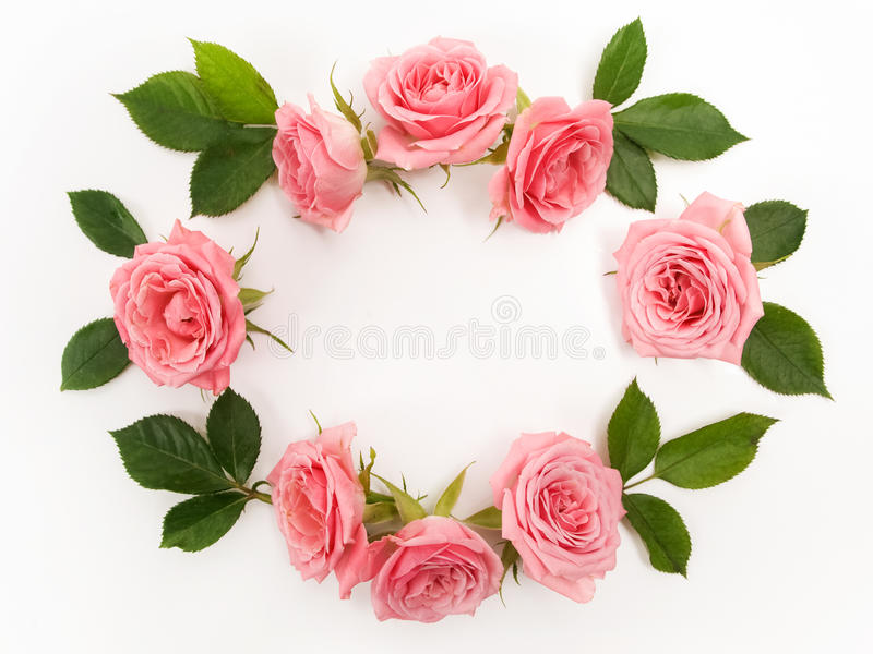 Marco redondo hecho de las rosas rosadas, hojas verdes, ramas, estampado de flores en el fondo blanco Endecha plana, visión super foto de archivo