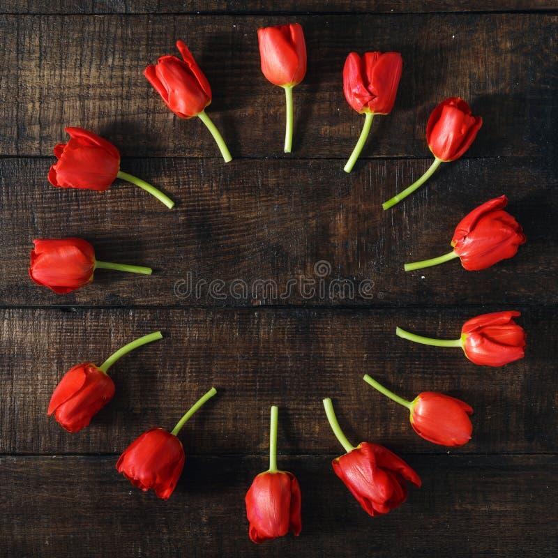 Marco redondo hecho de tulipanes rojos en fondo de madera oscuro imagen de archivo libre de regalías