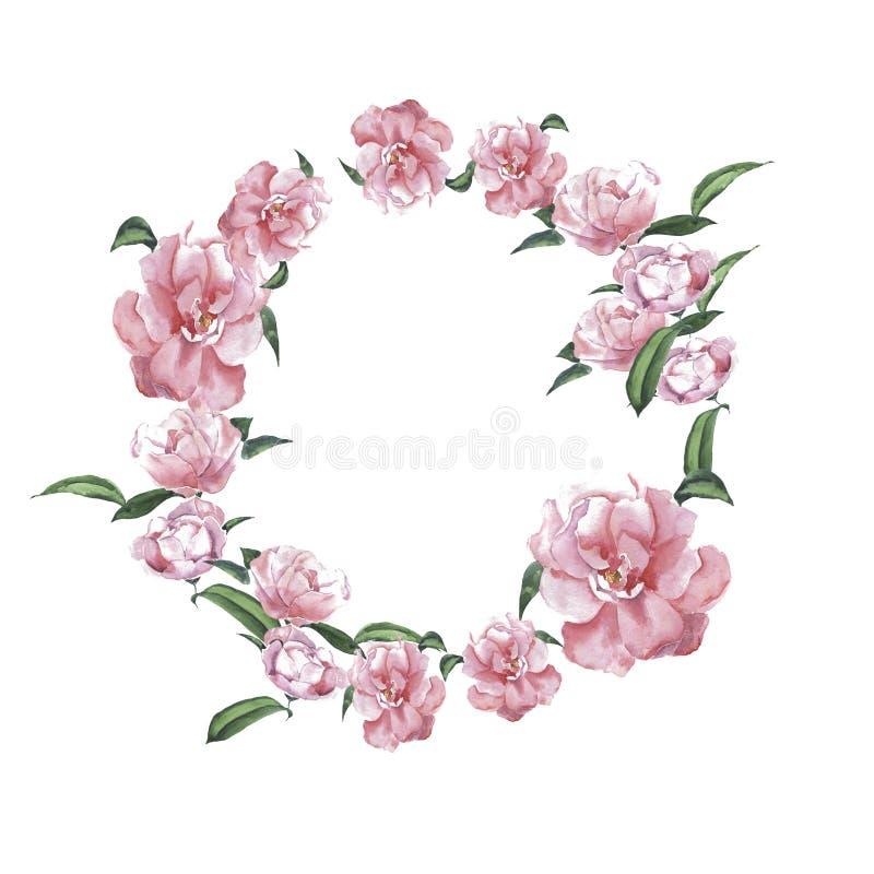 Marco rosado de la acuarela de la flor de la magnolia stock de ilustración