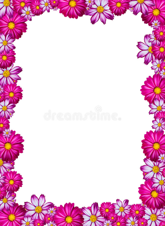 Marco rosado de la flor libre illustration
